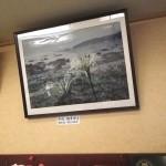 店内に「はまゆう」の写真