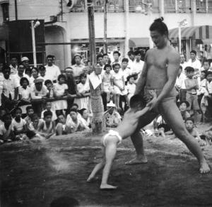 相撲2-1