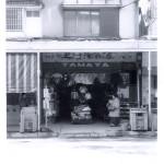 tamaya03