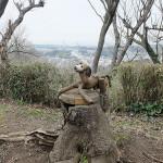 三浦半島の景色をのぞむオブジェ